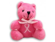 Breast Cancer Awareness Pink Ribbon Bear Plush Keychain
