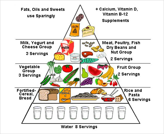 Cancer Prevention Tips food pyramid